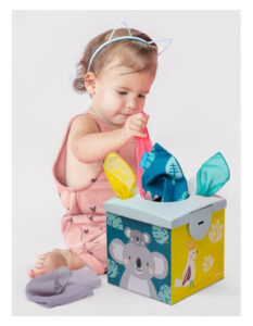 Kimmy Koala Wonder Tissue Box